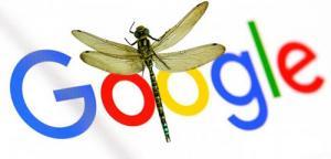 """谷歌官宣正式放弃中国特制版搜索引擎项目""""蜻蜓"""""""