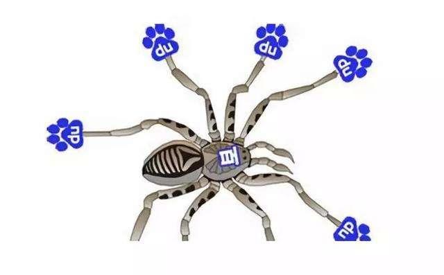 网站快速增加百度蜘蛛爬行的10个技巧