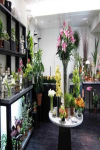 开一个花店需要多少钱