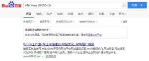 如何查看搜索引擎网站收录情况?